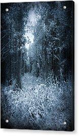 Dark Place Acrylic Print by Svetlana Sewell