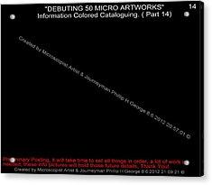 Debuting 50 Micro Artworks Part 14 Acrylic Print by Phillip H George