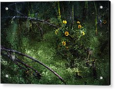 Deep Into Nature Acrylic Print by Bonnie Bruno