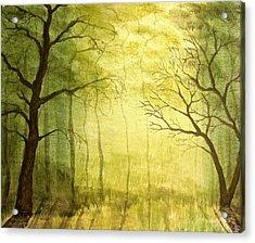 Deep Woods Acrylic Print by Heather Matthews
