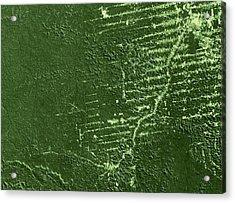 Deforestation In Rondonia, Brazil, 1992 Acrylic Print by Nasa