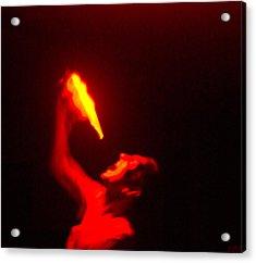 Demon Drinking Molten Lead Acrylic Print by Douglas Barnett