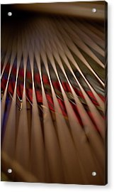 Detail Of Piano Strings Acrylic Print by Christopher Kontoes