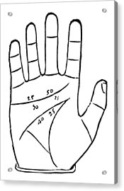 Diagram Used In Palmistry, 16th Century Acrylic Print by Middle Temple Library