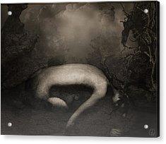 Disappearing Light Acrylic Print by Gun Legler