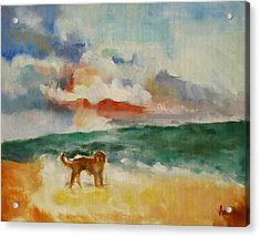 Dog On The Beach Acrylic Print by Susan Hanlon