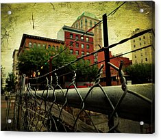 Down The Fence Acrylic Print by Cathie Tyler