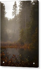 Dream Of Autumn Acrylic Print by Mike Reid