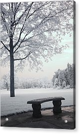 Dreamy White Blue Infrared Michigan Landscape Acrylic Print by Kathy Fornal