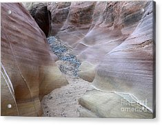 Dry Creek Bed 3 Acrylic Print by Bob Christopher