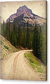 Dubois Mountain Road Acrylic Print by Marty Koch