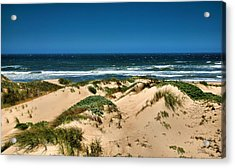 Dunes And The Pacific Acrylic Print by Steven Ainsworth