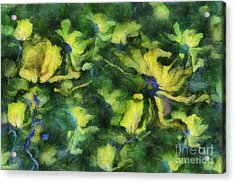 Duo Daisies - Bk01bdp01a Acrylic Print by Variance Collections