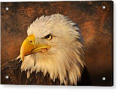 Eagle 47 Acrylic Print by Marty Koch