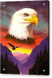 Eagle Acrylic Print by MGL Studio - Chris Hiett