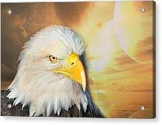 Eagle Sun Acrylic Print by Marty Koch