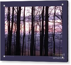 Early Morning Hues Acrylic Print by Patricia Overmoyer