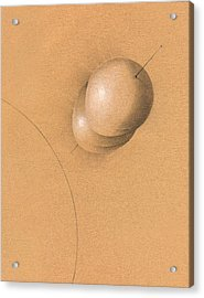 Earth Log I Acrylic Print by Albert Notarbartolo