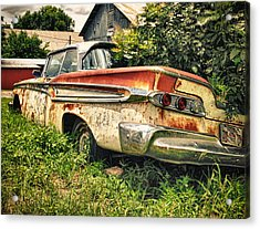 Edsel In The Weeds Acrylic Print by Jon Herrera