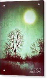 Eerie Landscape Acrylic Print by Jill Battaglia