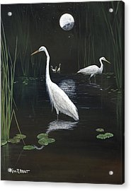 Egrets In The Moonlight Acrylic Print by Kevin Brant