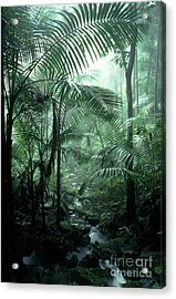 El Yunque National Forest Palms And Stream Acrylic Print by Thomas R Fletcher