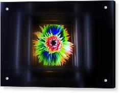 Electric Flower Acrylic Print by Marcia Lee Jones