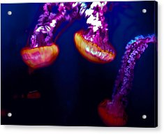 Electric Light Disco Acrylic Print by DigiArt Diaries by Vicky B Fuller