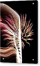 Electric Acrylic Print by Paulette Thomas