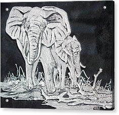 Elephant And Calf Acrylic Print by Akoko Okeyo