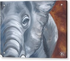 Ellie Acrylic Print by Thea Wolff