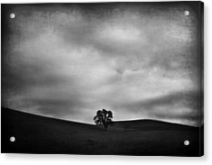 Emptiness Acrylic Print by Laurie Search