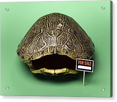 Empty Turtle Shell With For Sale Sign Acrylic Print by Jeffrey Hamilton