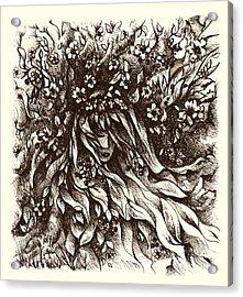 Enchantment Acrylic Print by Rachel Christine Nowicki