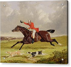 Encouraging Hounds Acrylic Print by John Frederick Herring Snr