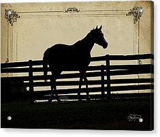 End Of The Day In Georgia - Horse Lovers Must See - Artist Cris Hayes Acrylic Print by Cris Hayes