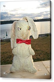 Energizer Bunny No More Acrylic Print by Kym Backland