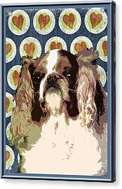 English Toy Spaniel Acrylic Print by One Rude Dawg Orcutt