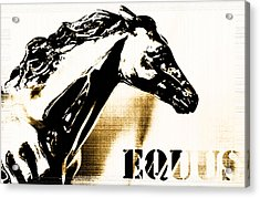 Equus Horse Juvenile Licensing Acrylic Print by Anahi DeCanio
