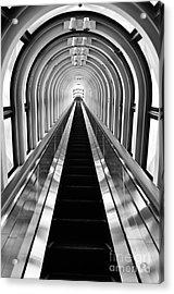 Escalation Acrylic Print by Dean Harte
