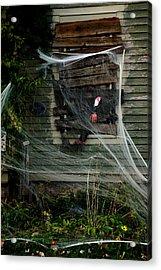 Escaping The Web Acrylic Print by LeeAnn McLaneGoetz McLaneGoetzStudioLLCcom