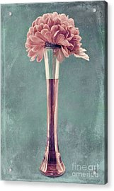 Estillo Vase - S01v4b2t03 Acrylic Print by Variance Collections