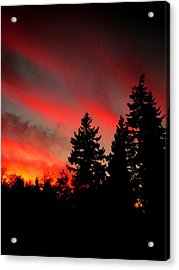 Evening Glow Acrylic Print by Kevin D Davis