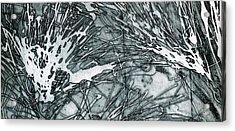 Explosion Acrylic Print by Rebecca Bourke