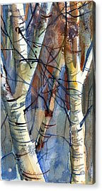 Fade To Autumn Acrylic Print by Mindy Newman
