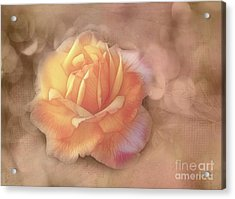 Faded Memories Acrylic Print by Judi Bagwell