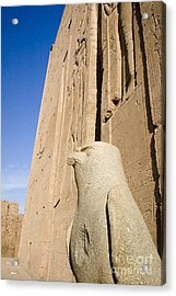 Falcon Statue At Edfu Acrylic Print by Darcy Michaelchuk