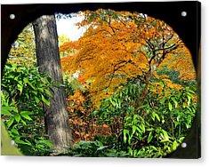 Fall Arriving Acrylic Print by Vassilis Borovas