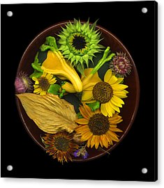 Fall Colors Acrylic Print by J Arthur Davis