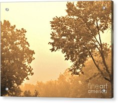 Fall Foggy Morning Acrylic Print by Marsha Heiken
